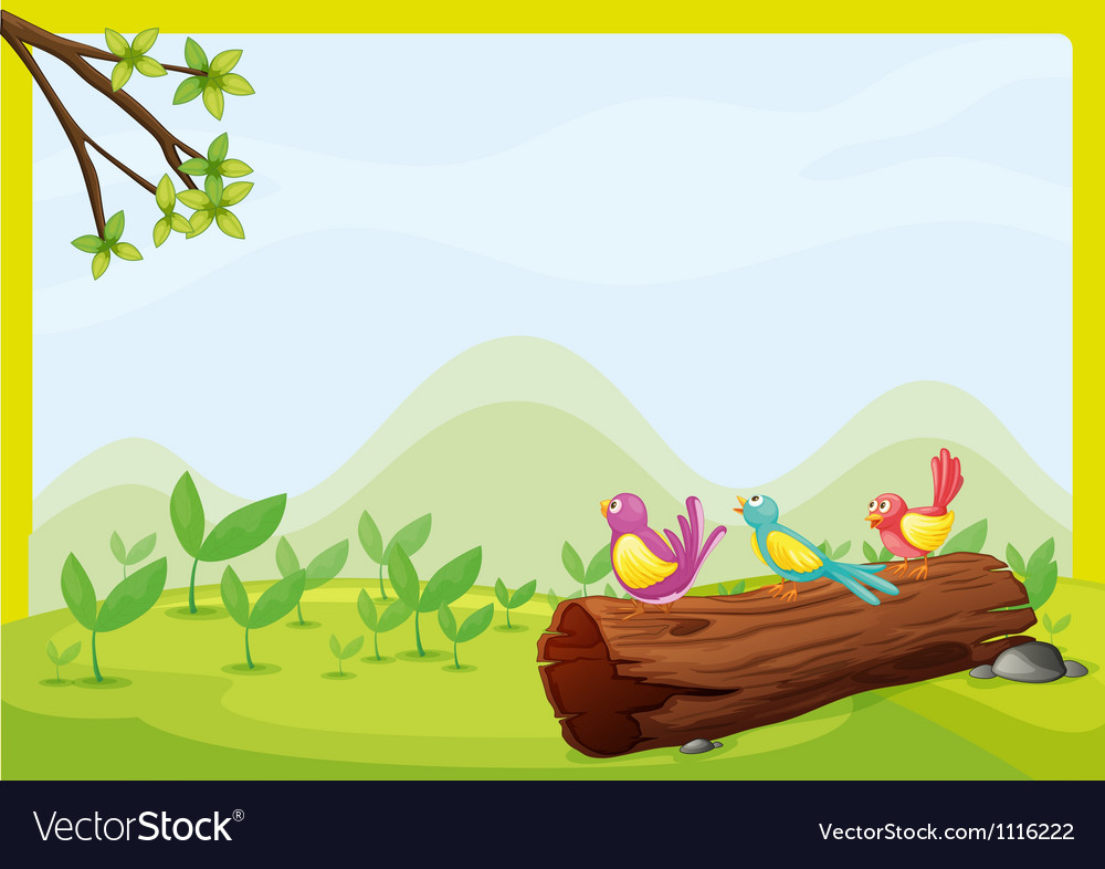 Birds sitting on a dry wood vector
