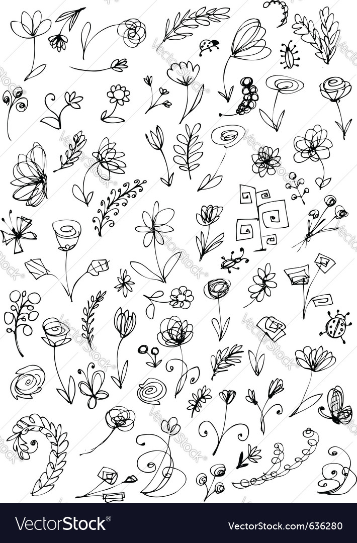 Floral elements sketch vector