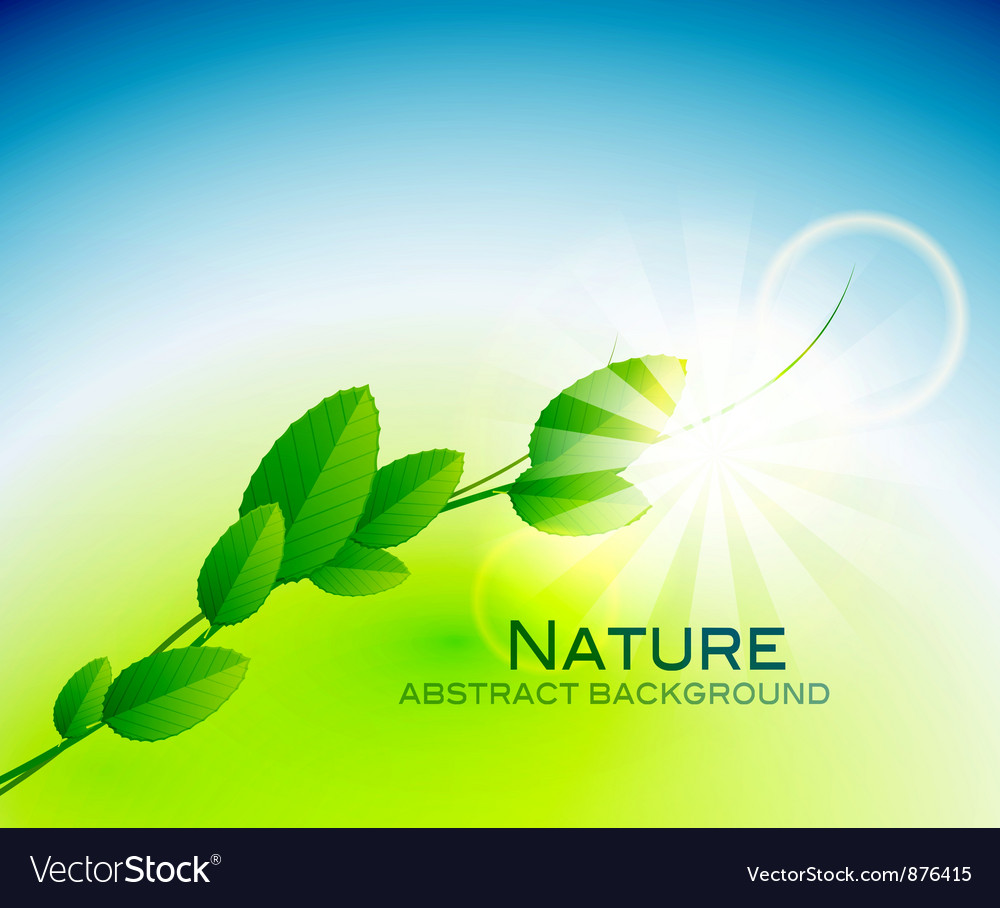 Nature leaves background vector