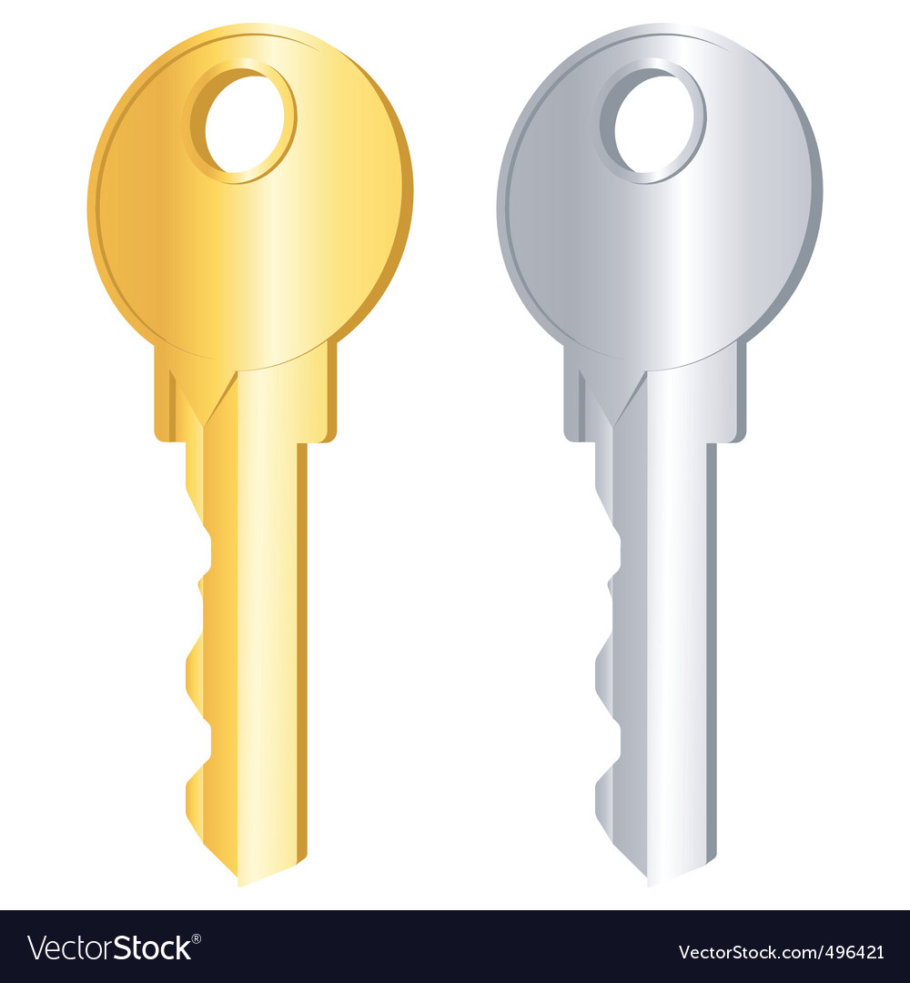 Gold and silver keys vector