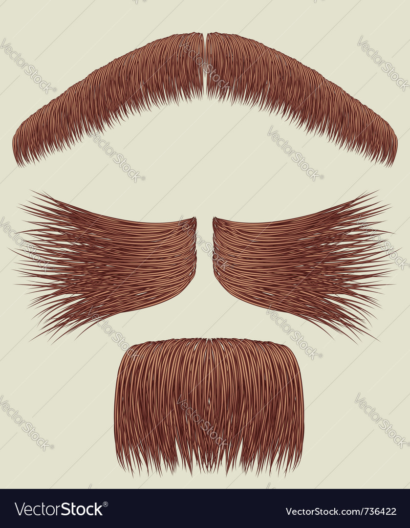 Mustache collection vector