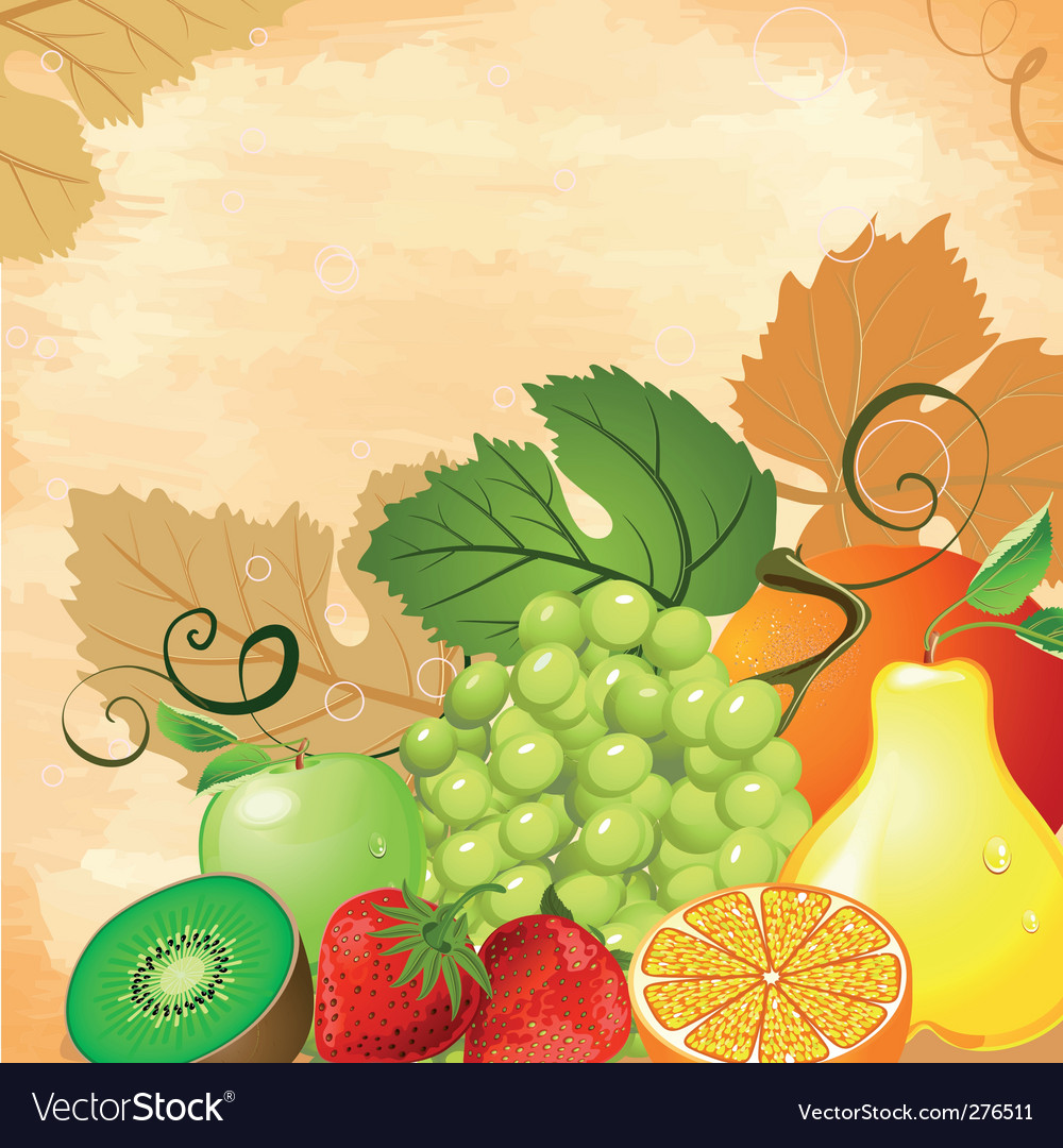 Fruit still life vector