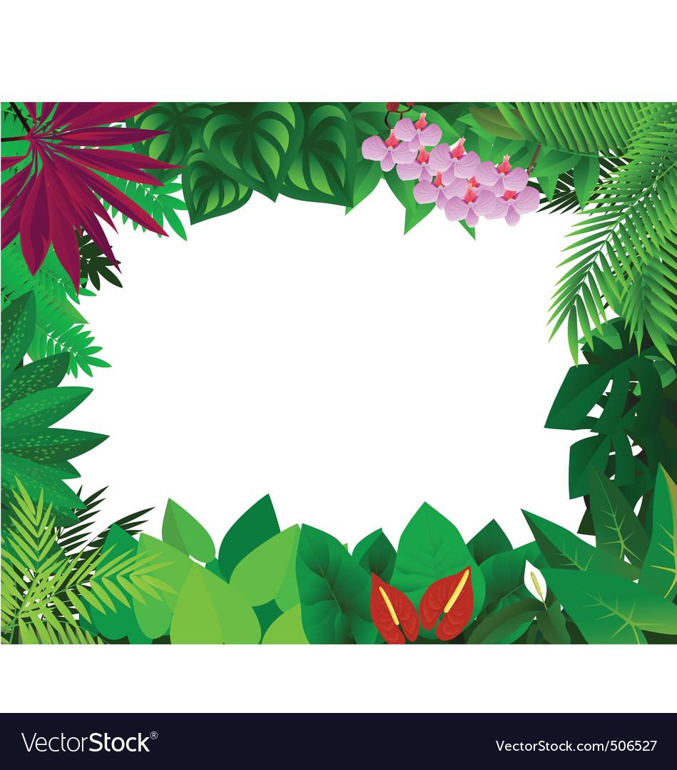 Forest frame vector