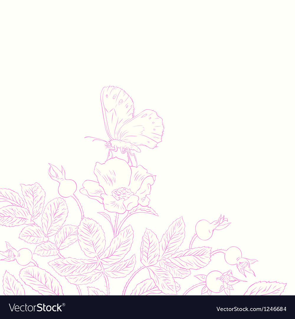 Rosehip and butterfly vector