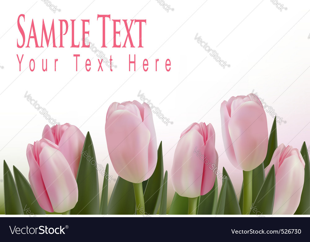 Pink tulips bckground vector