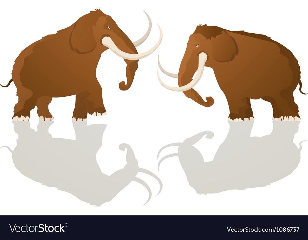 Charging bulls vector