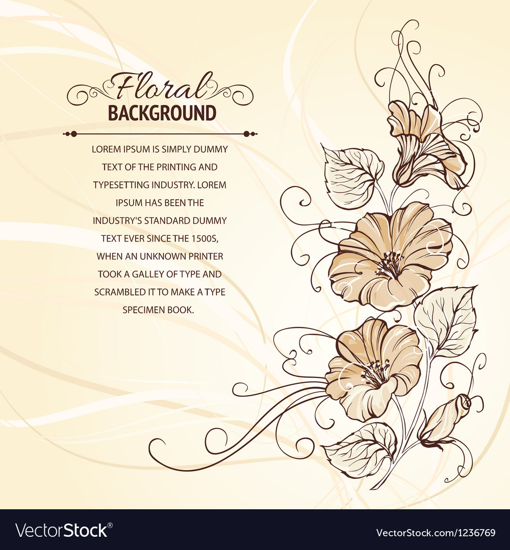 Bindweed on a sepia background vector