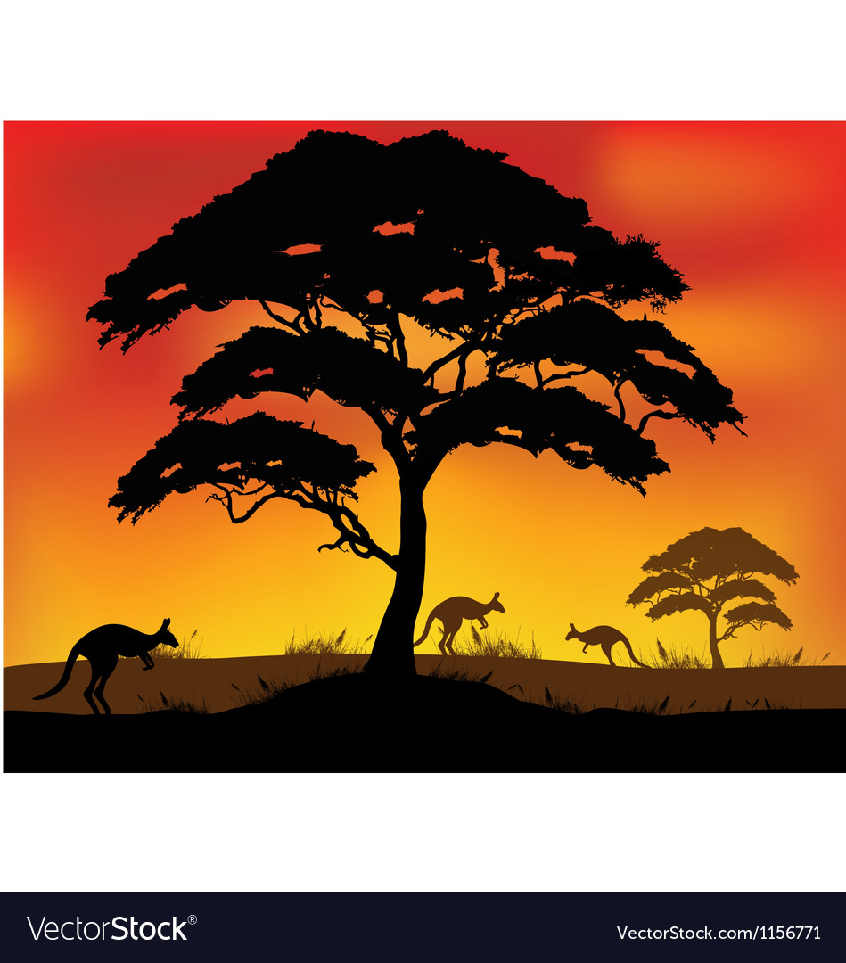Safari background vector