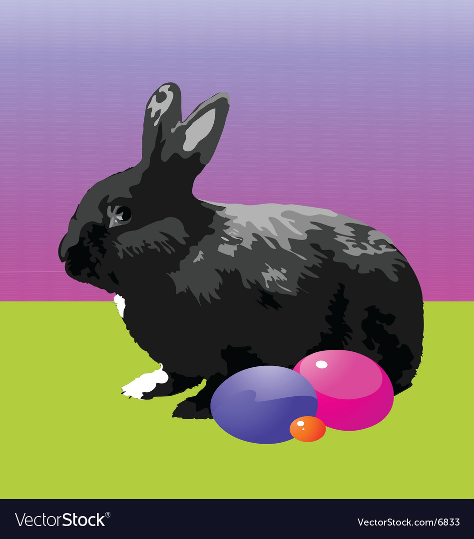 Black rabbit vector