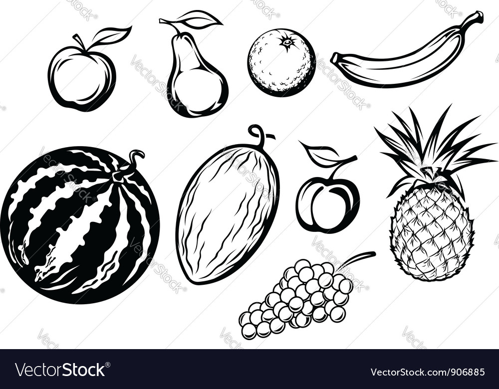 Set of fresh fruits icons vector