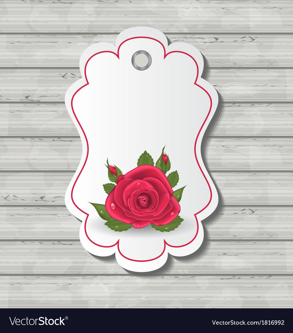 Free elegant card with red rose for valentine day vector