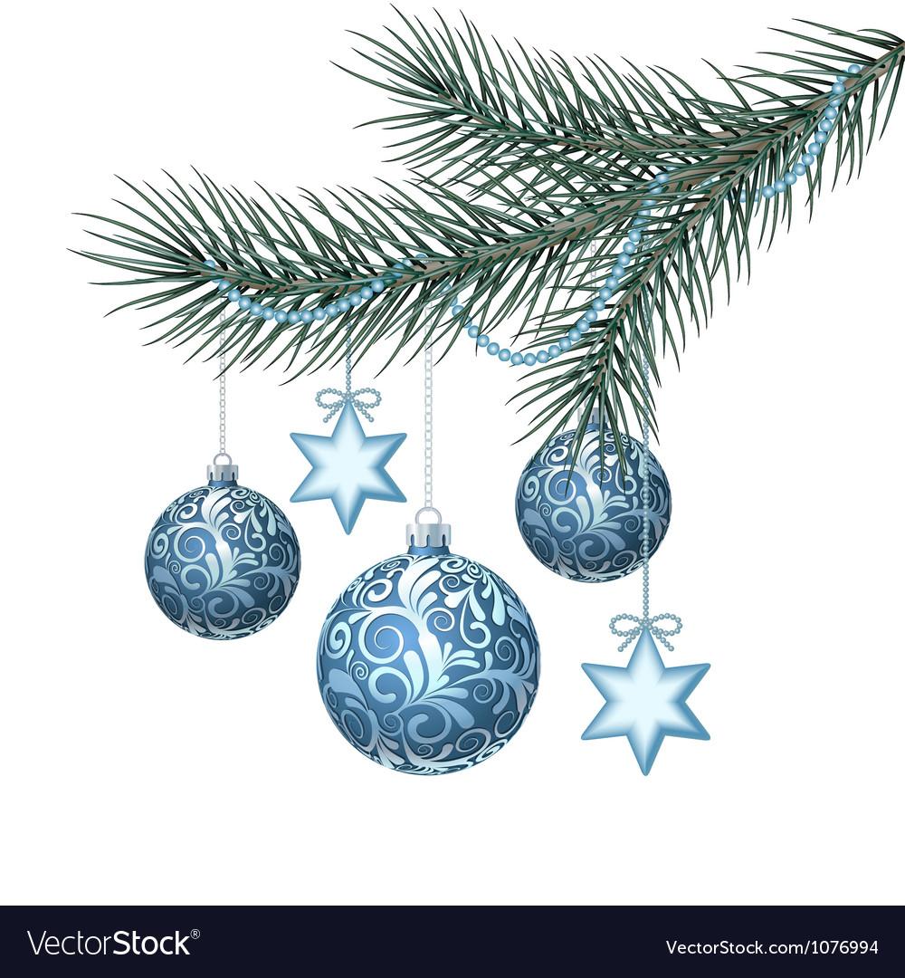 Blue christmas balls on green spruce branch vector