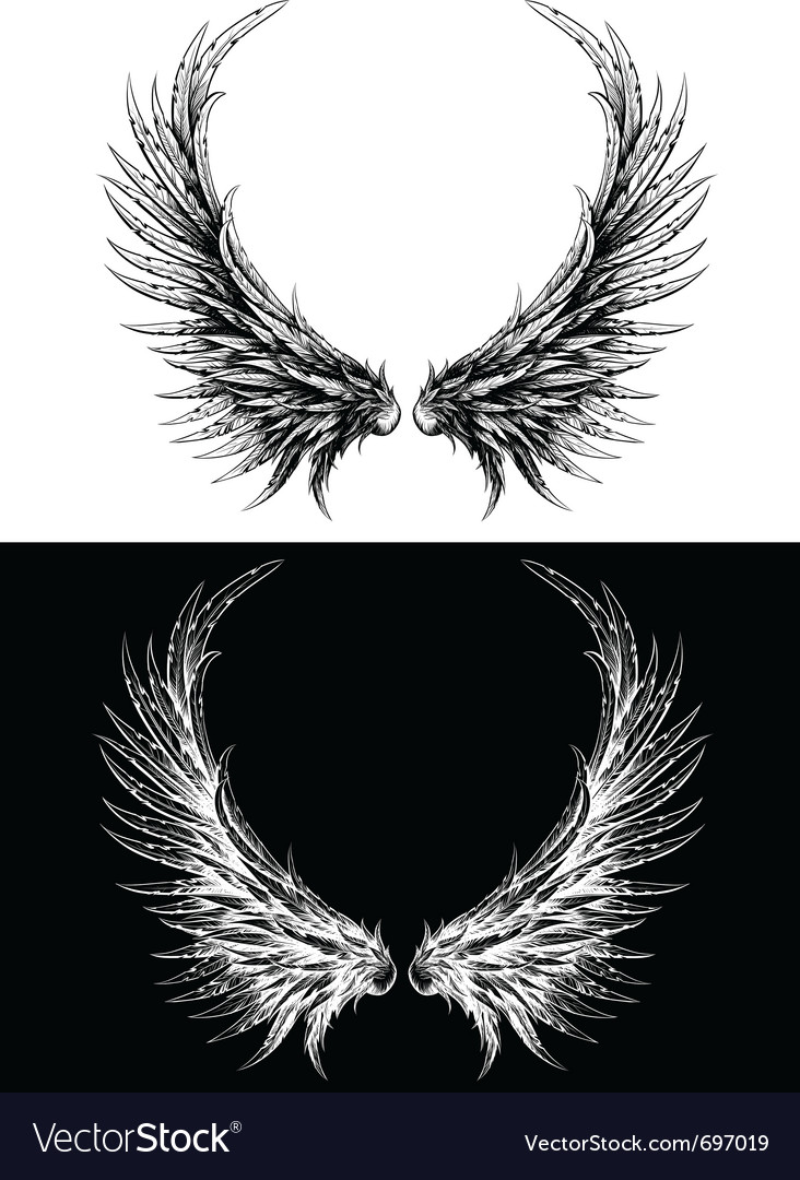 Silhouette of wings vector