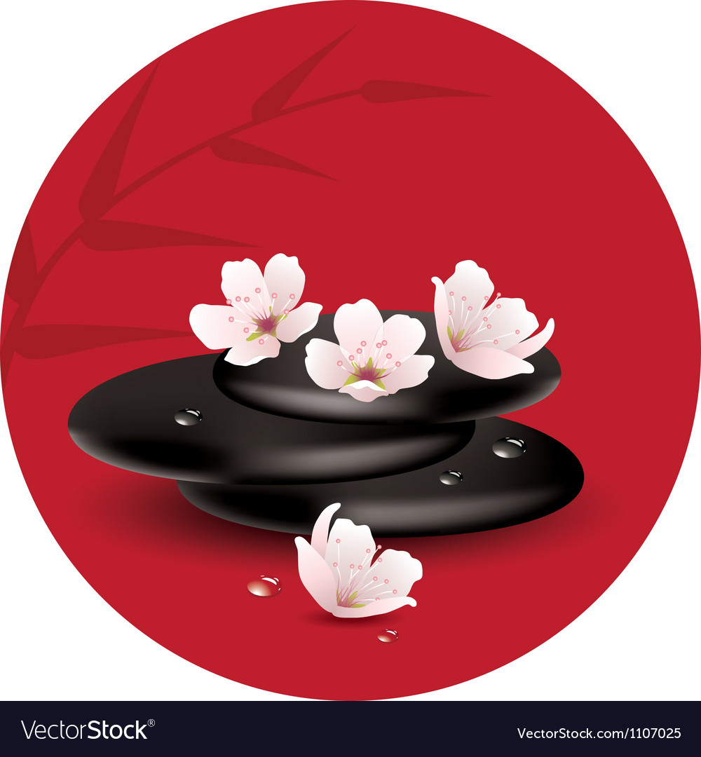Stones and cherry flowers vector