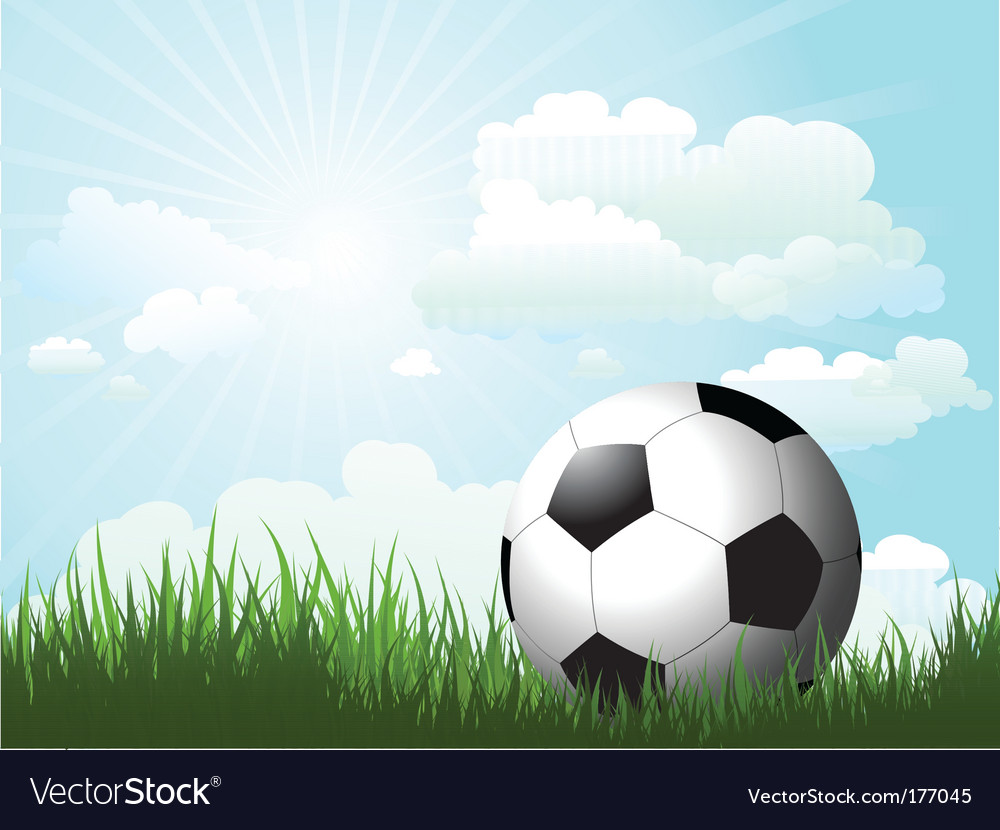 Football in grass vector