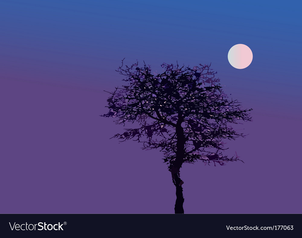 Tree night vector