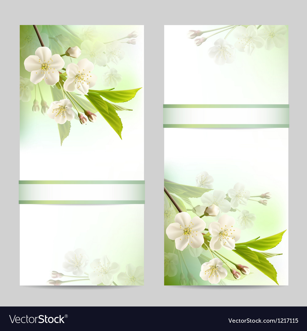 Set of spring banners vector