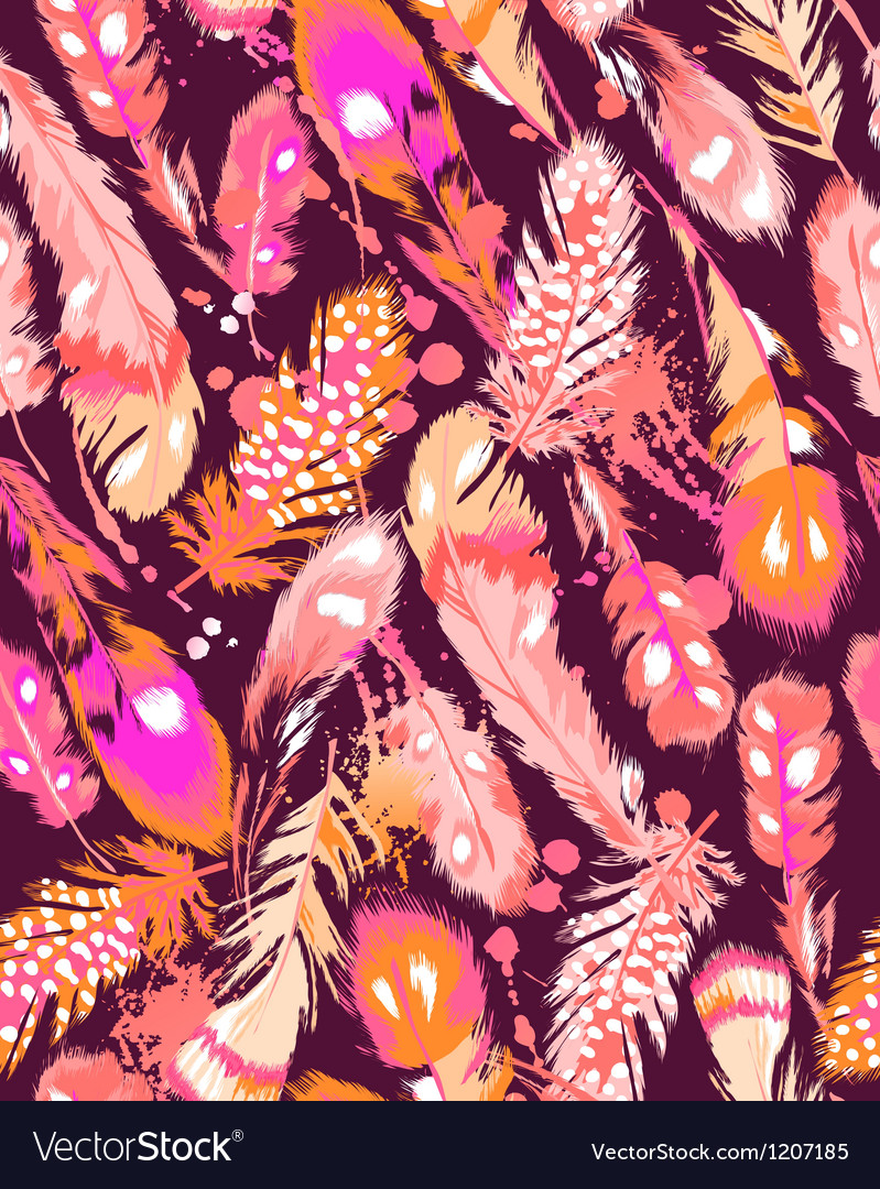 Beautiful orange and pink feathers vector