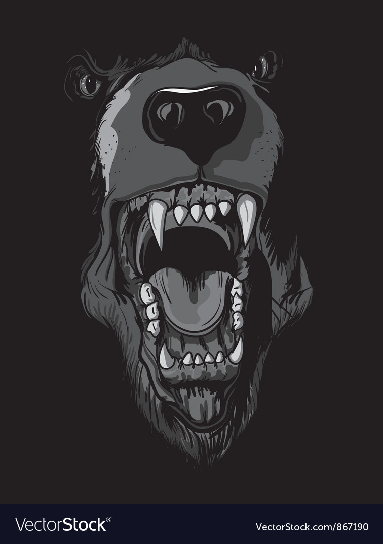 Tshirt design with raging bear vector