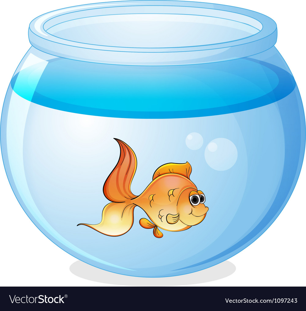 A fish and a bowl vector