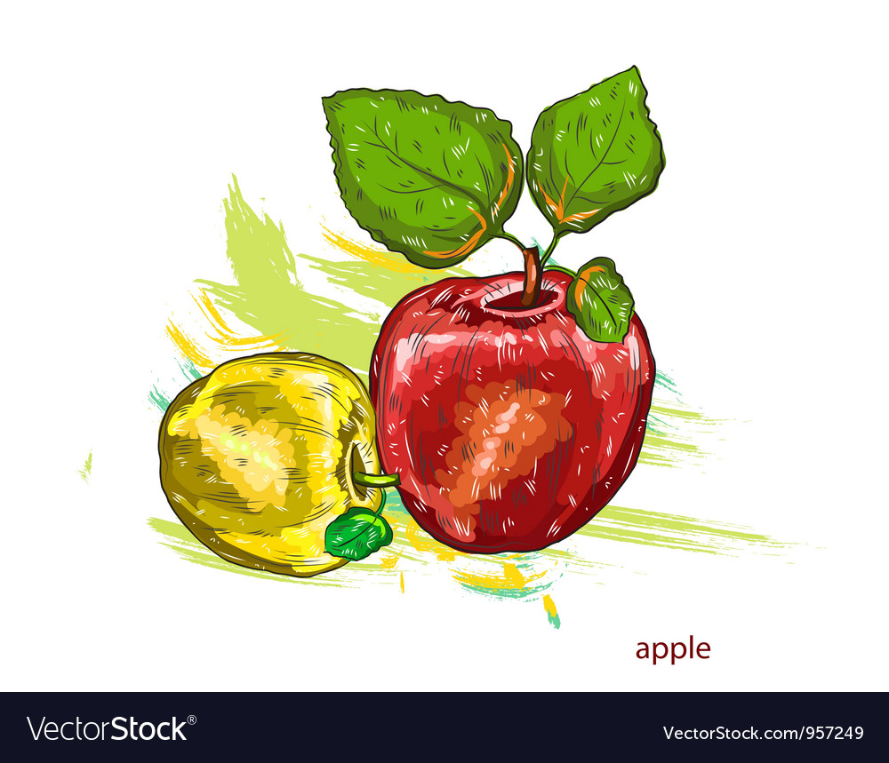 Apples with colorful splashes vector