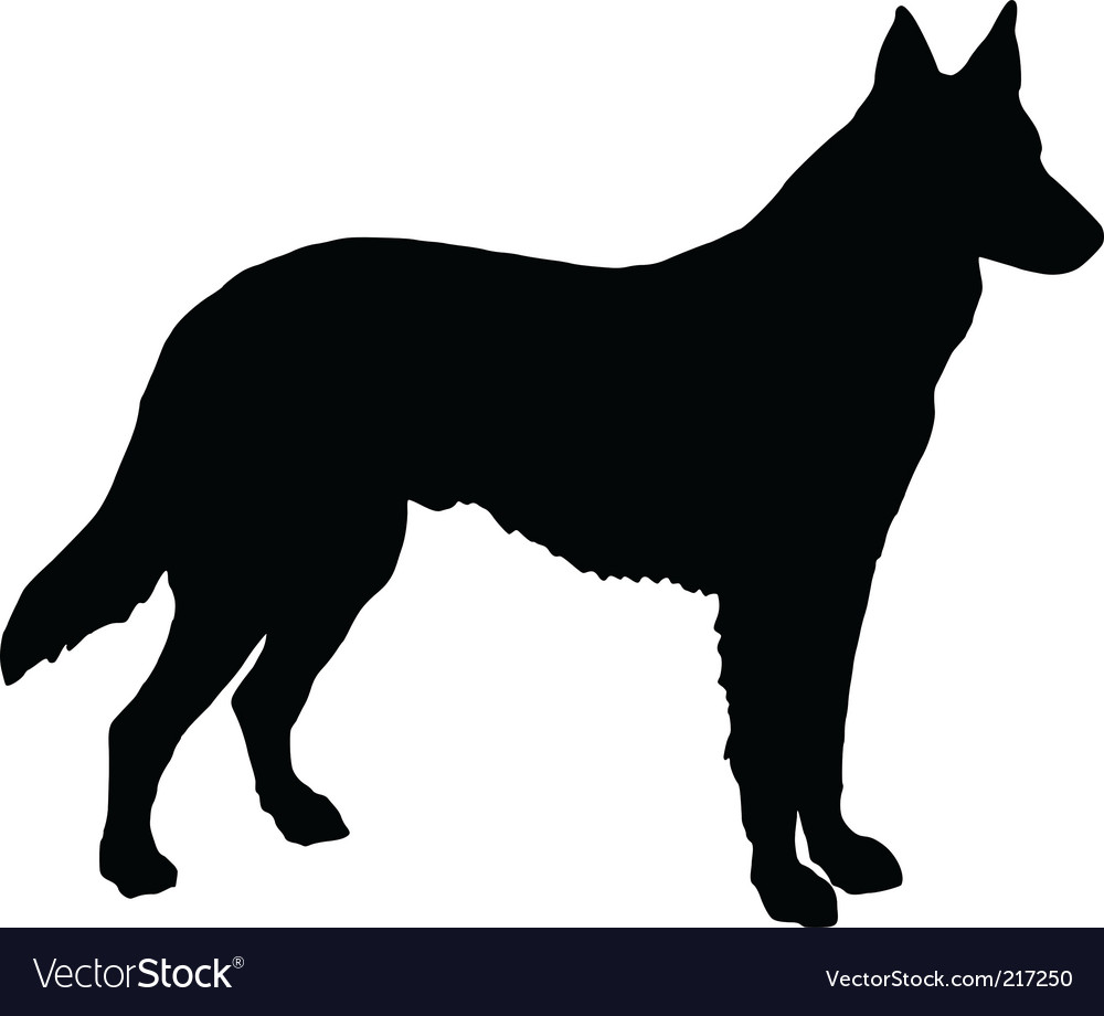 German shepherd dog vector