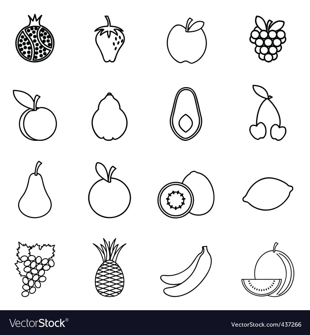 Fruit drawing vector