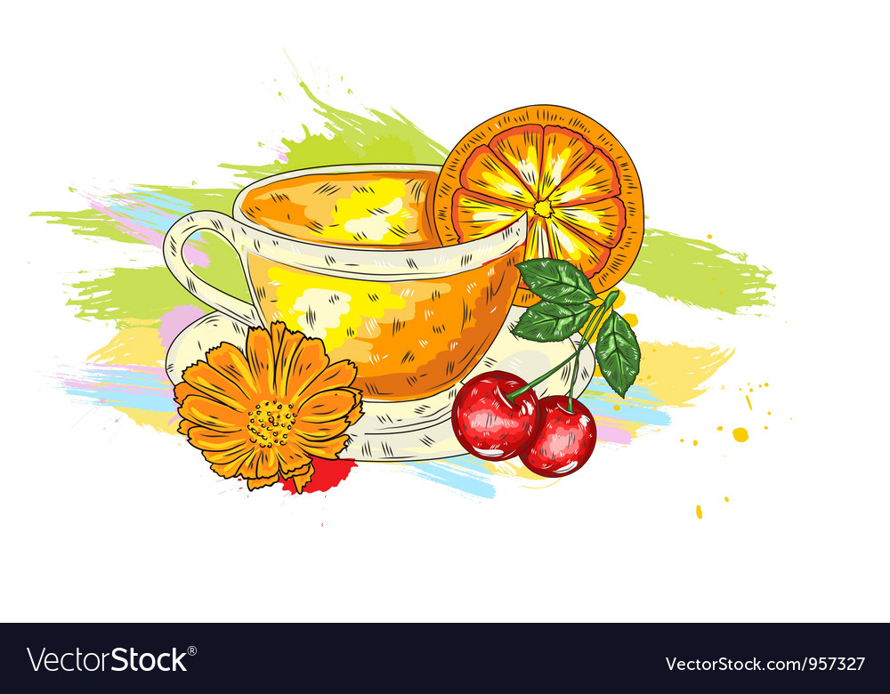 Fruits with colorful splashes vector