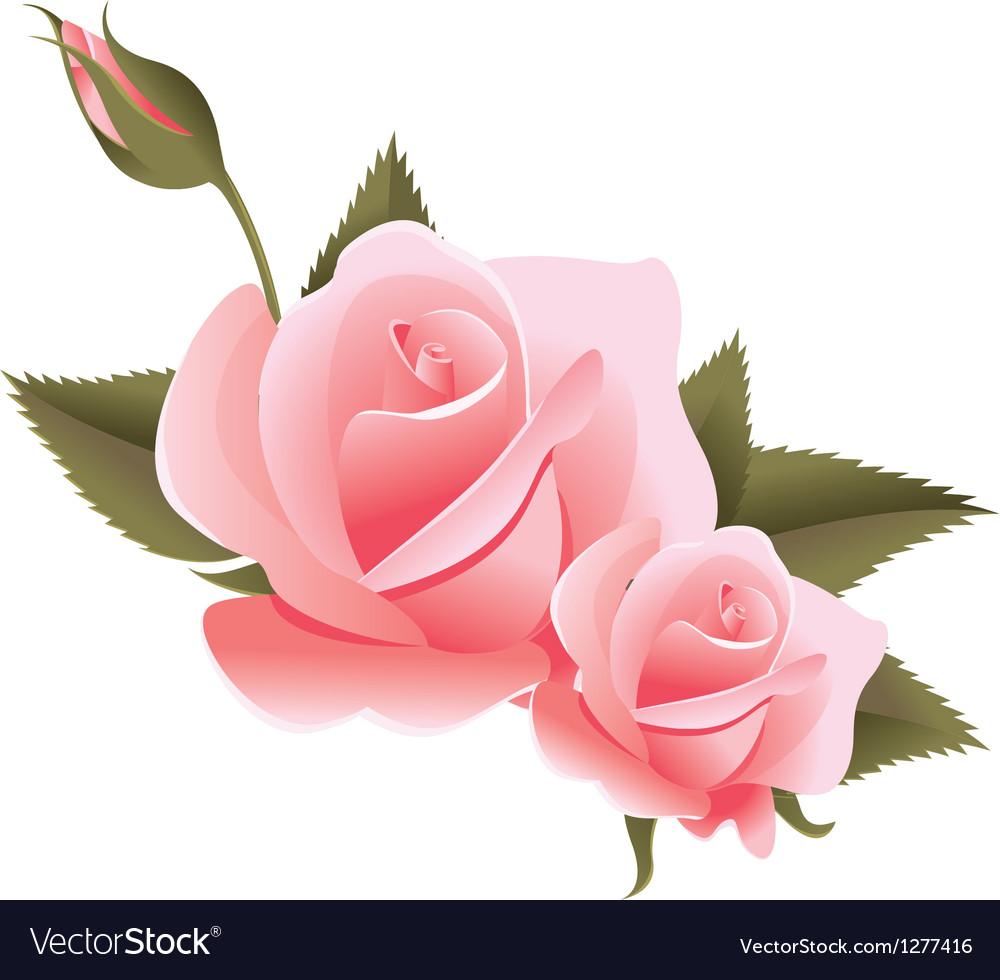 Flower design element vector