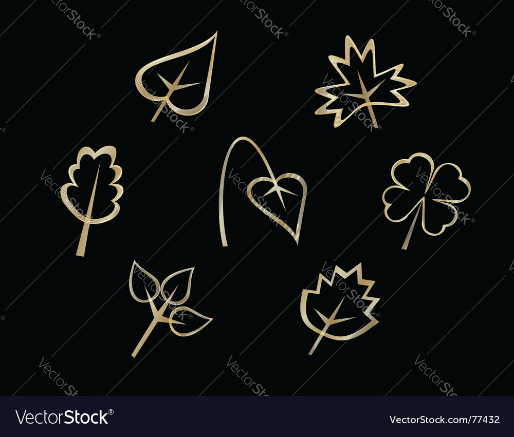 Set of leaves icons vector
