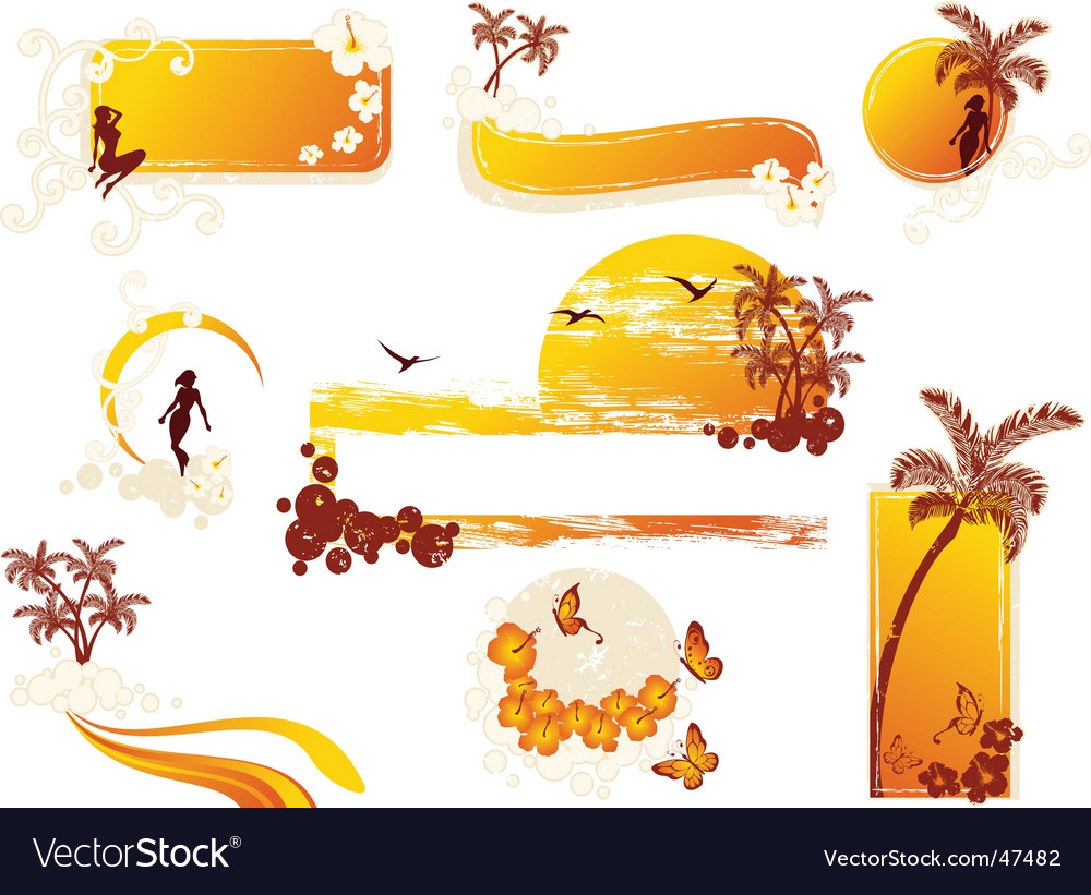 Tropical grungestyle elements vector