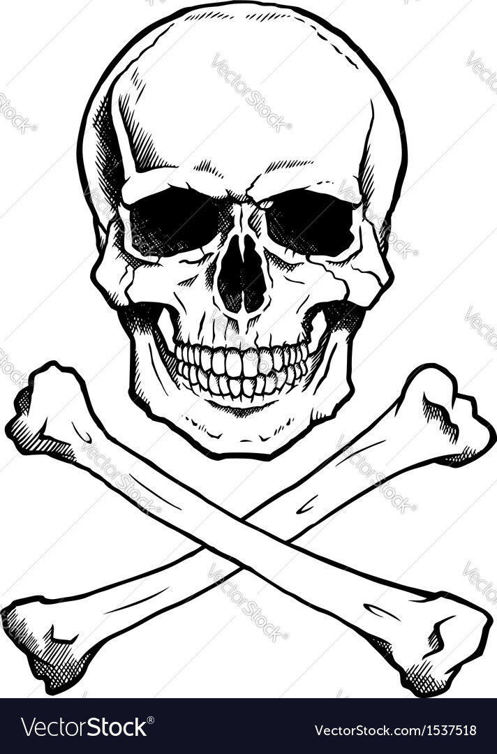 Blackwhite human skull and crossbones vector