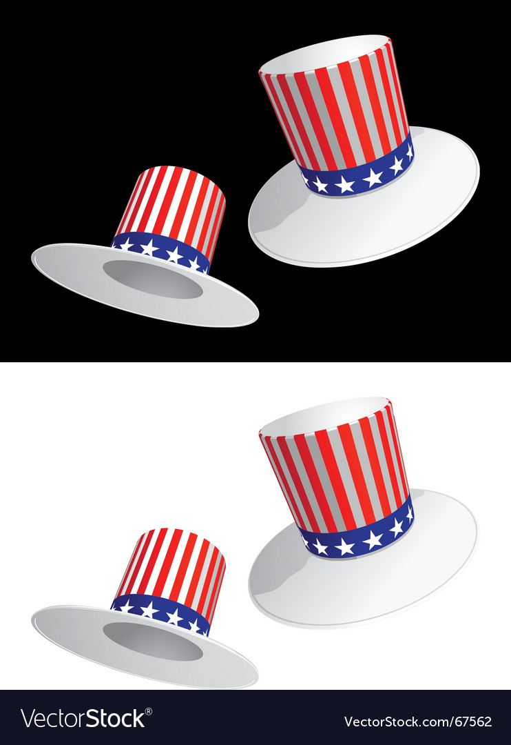 Usa hat vector