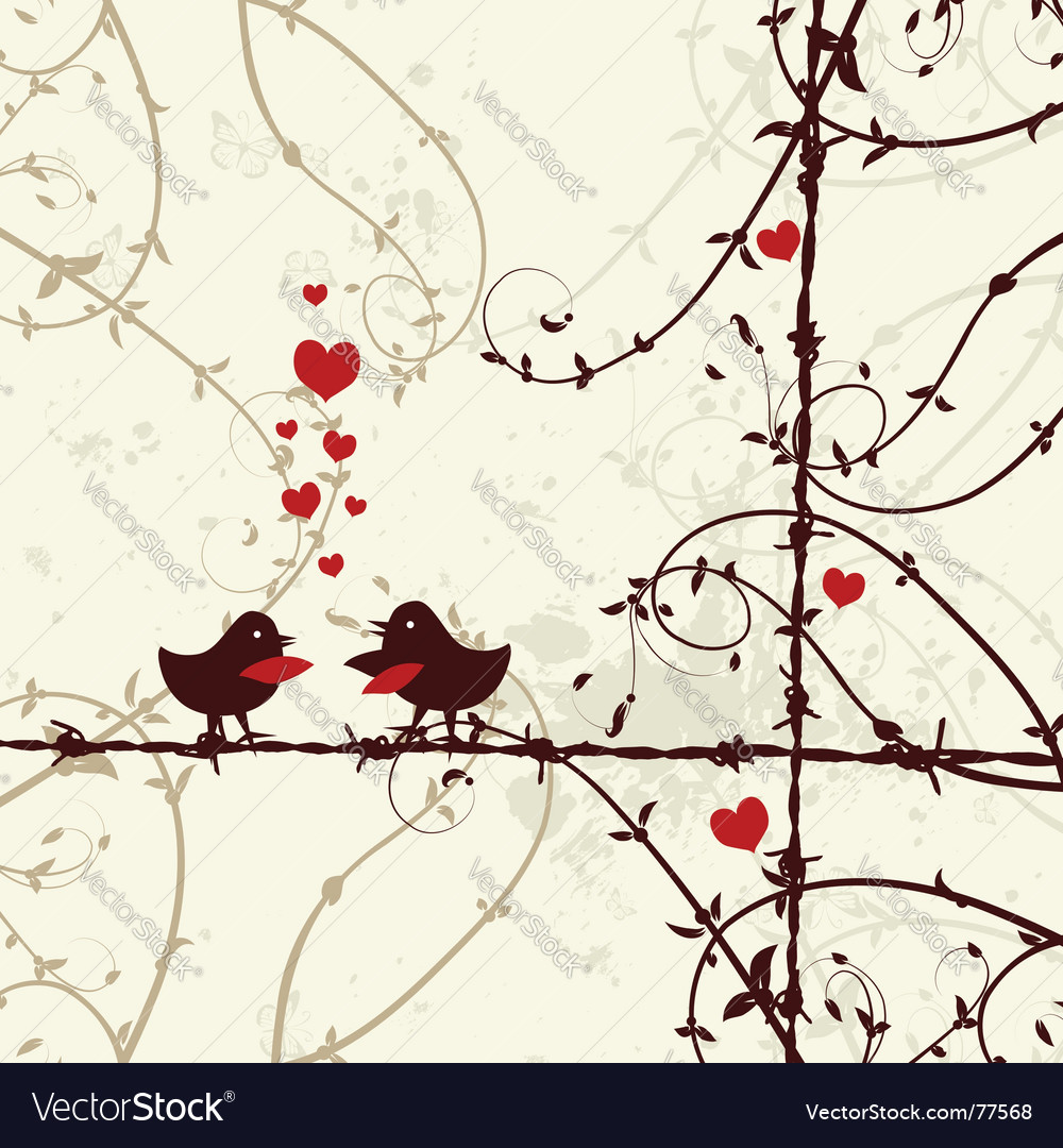 Love birds kissing on branch vector