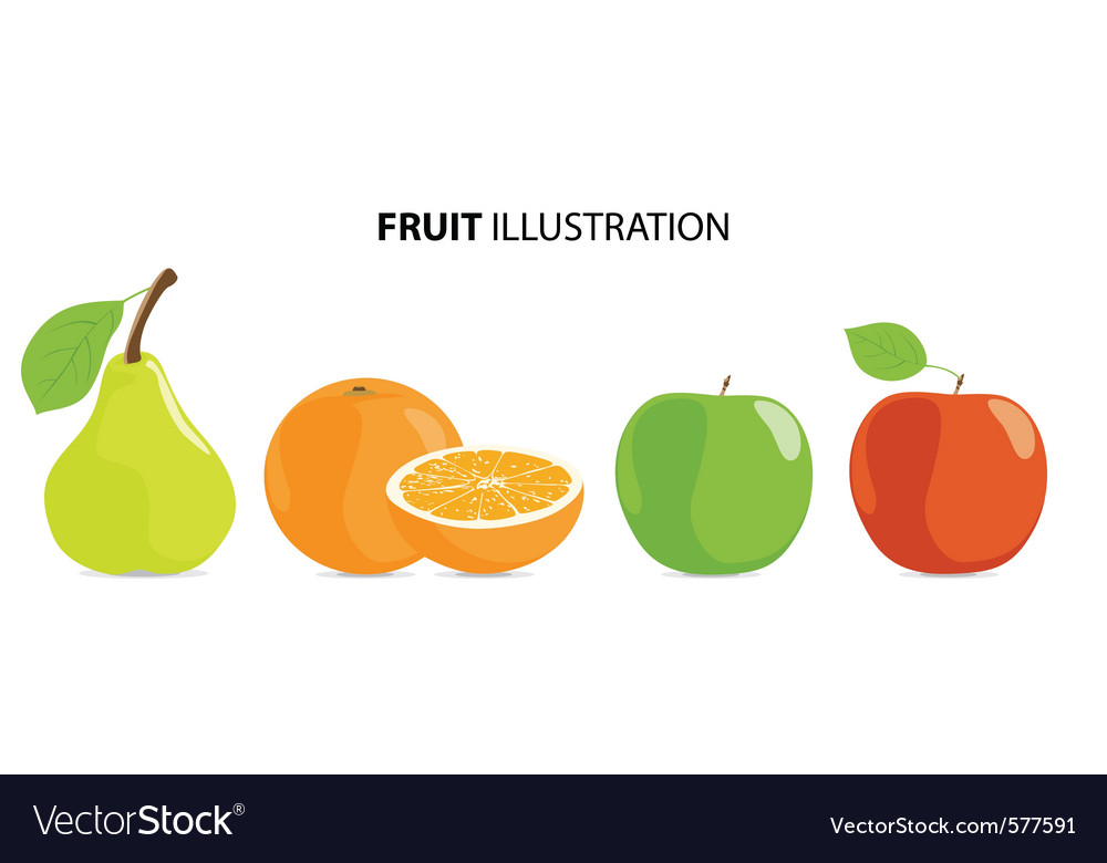 Ripe fruits vector