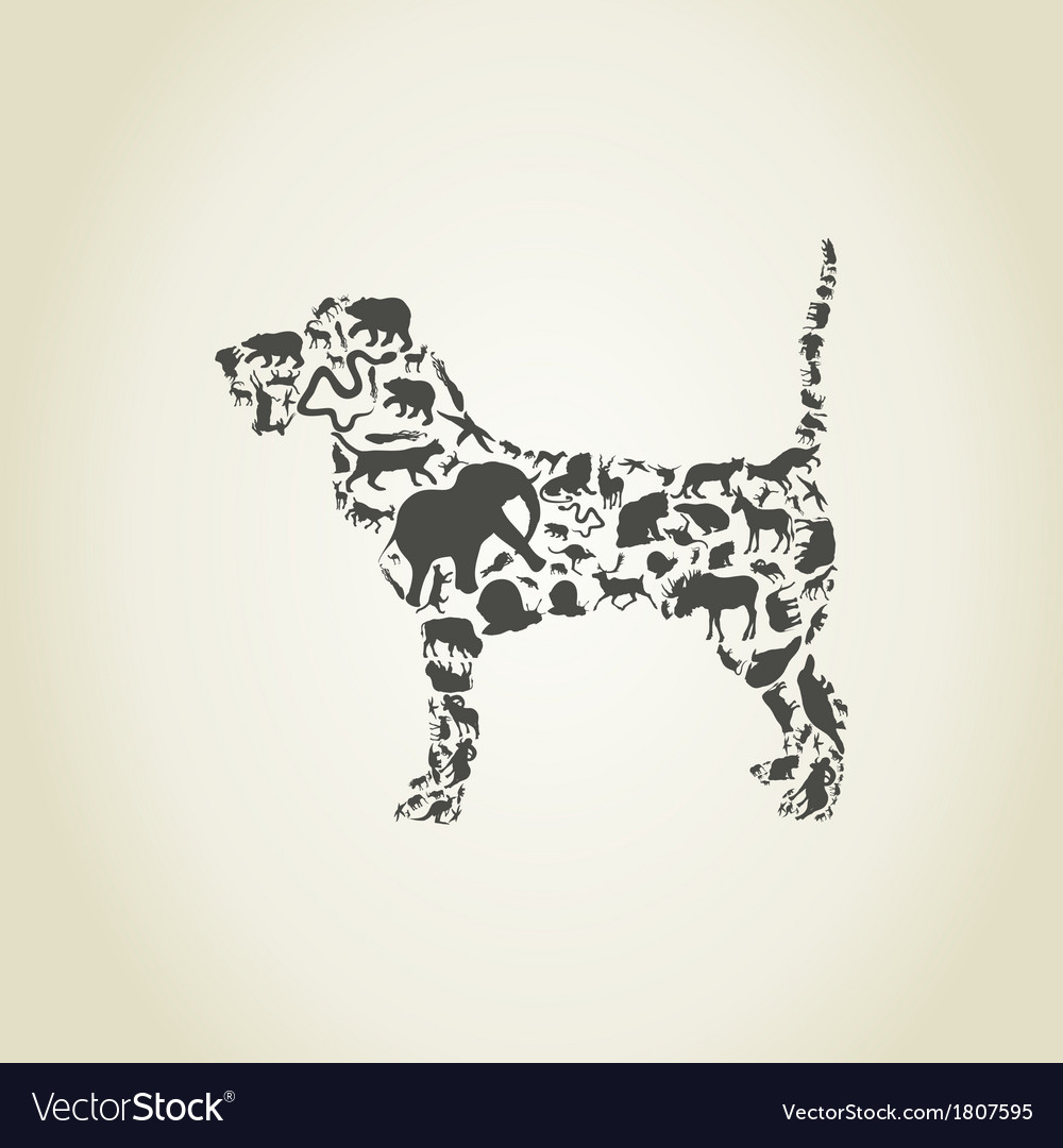 Dog an animal vector