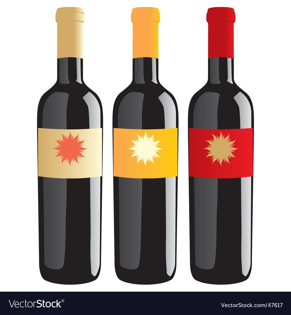 Wine bottles set vector