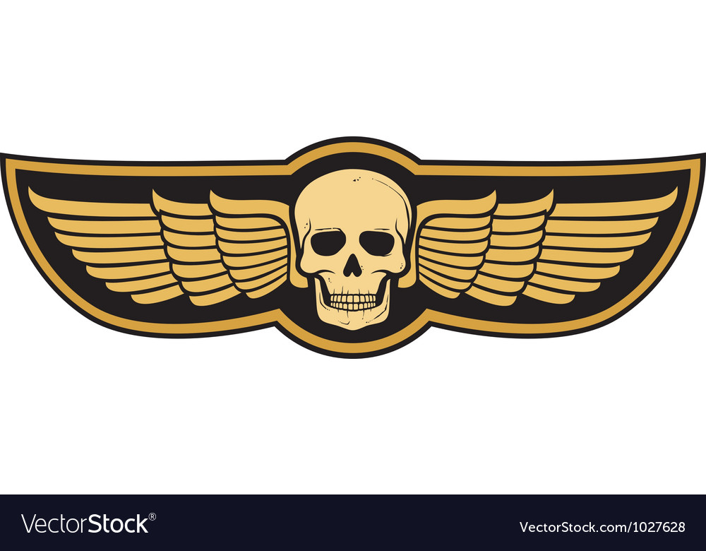 Skull and wings vector