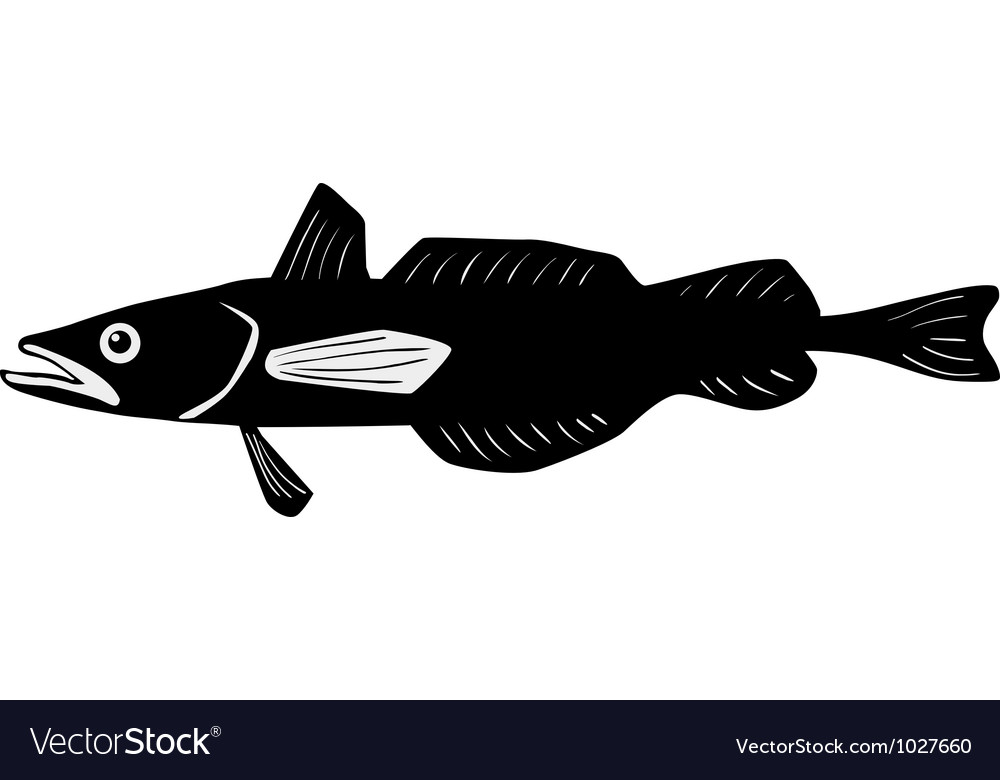 Silhouette of hake vector