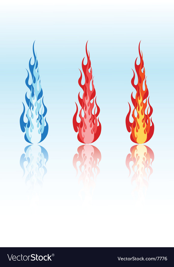 Colored flames vector