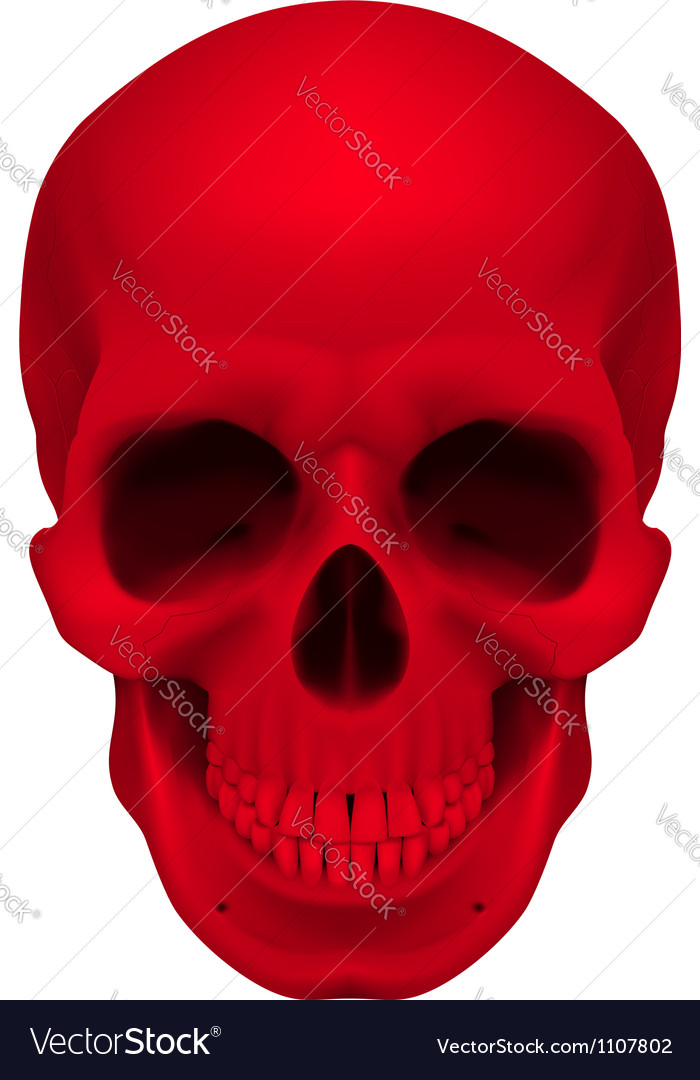 Red skull vector