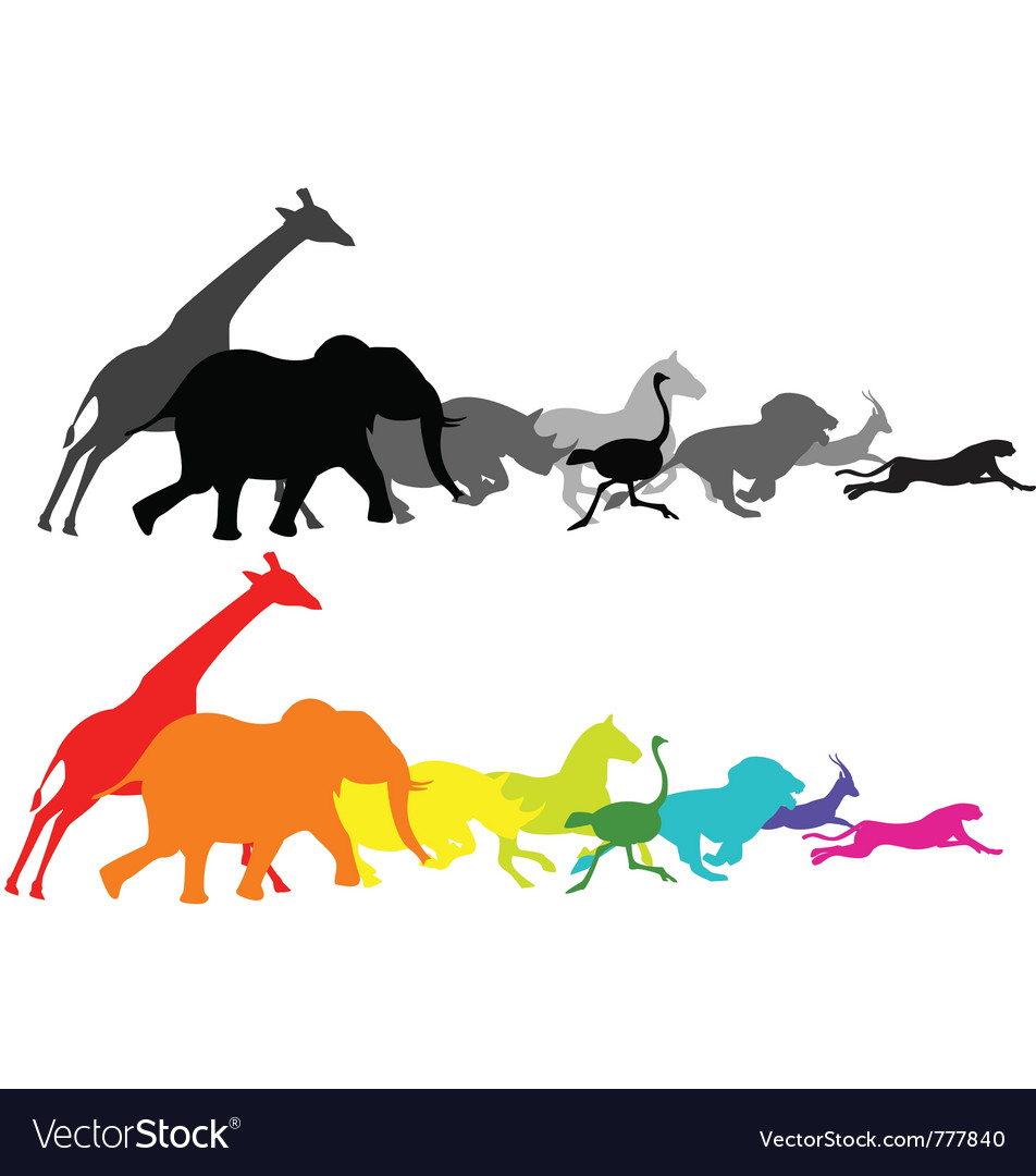 Wild animal racing vector