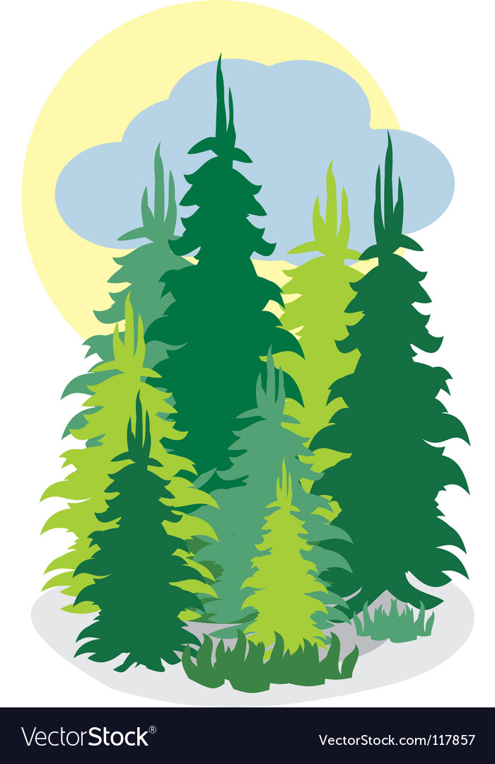 Forrest wood vector