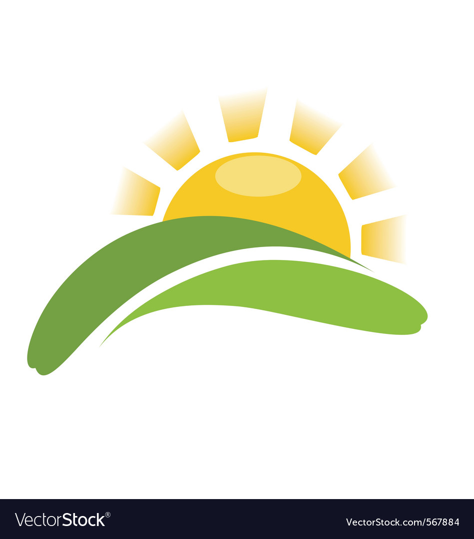 Sun and grass vector