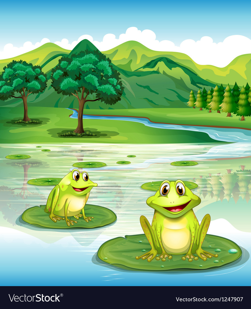 Two frogs above the waterlilies vector