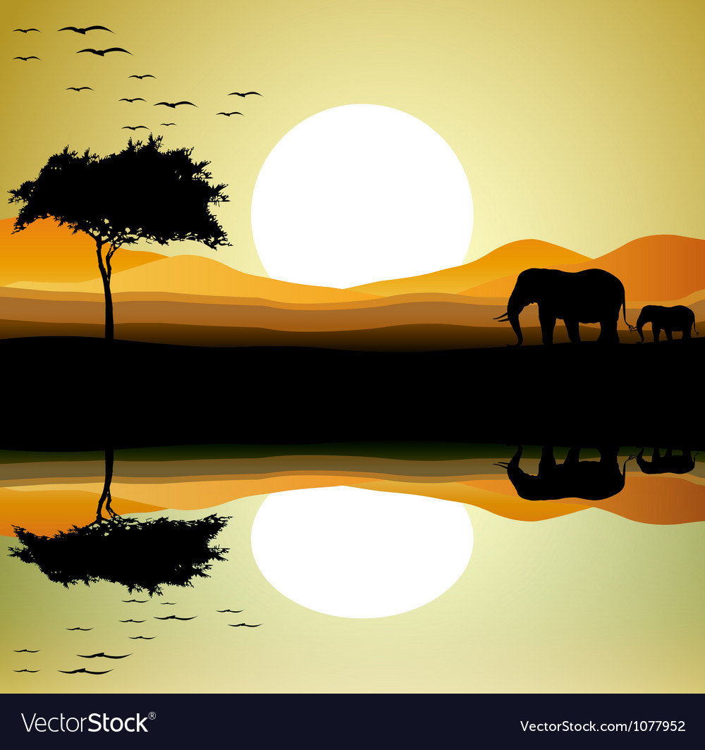 Safari of elephant silhouette vector