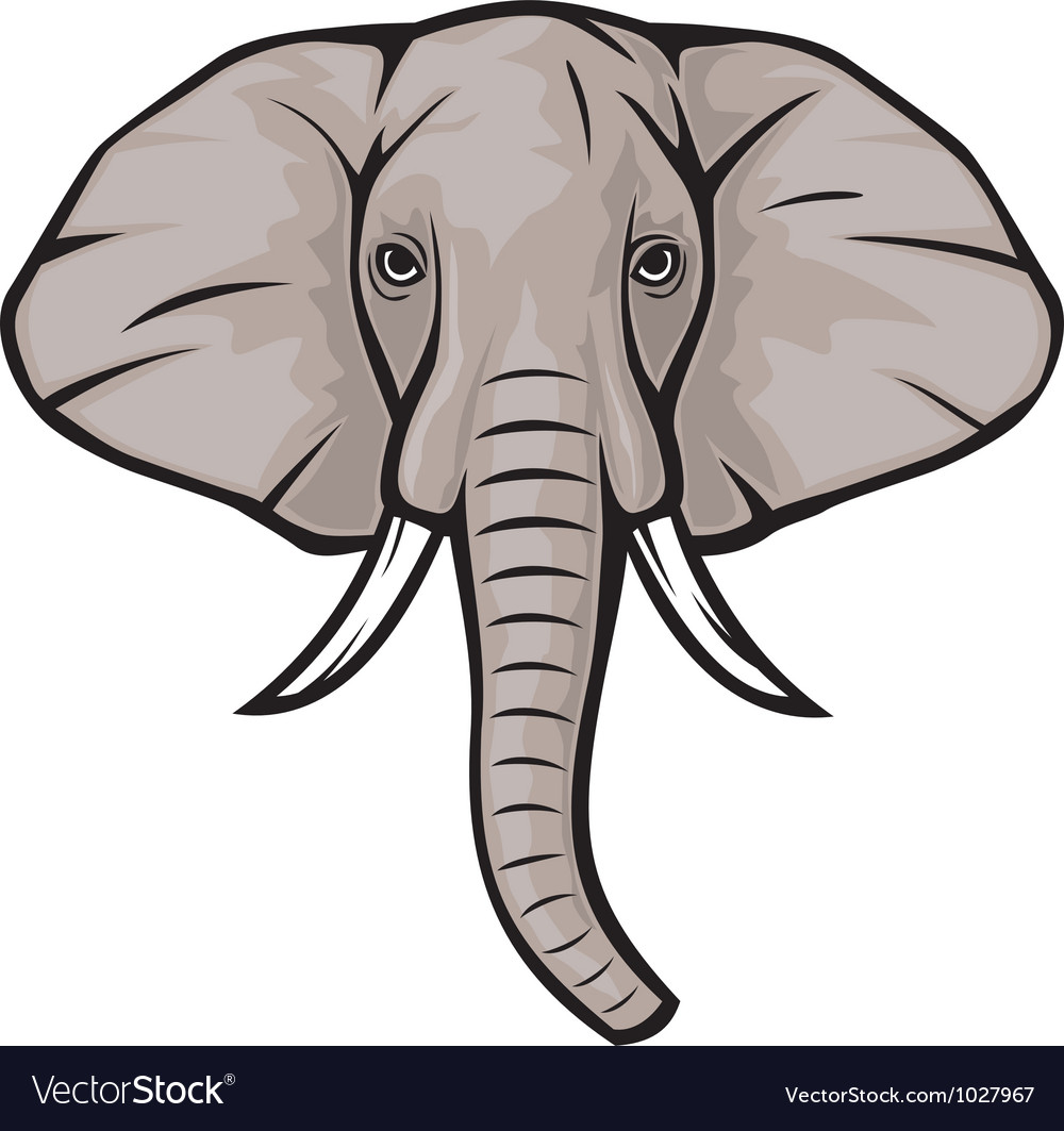 Elephant head vector