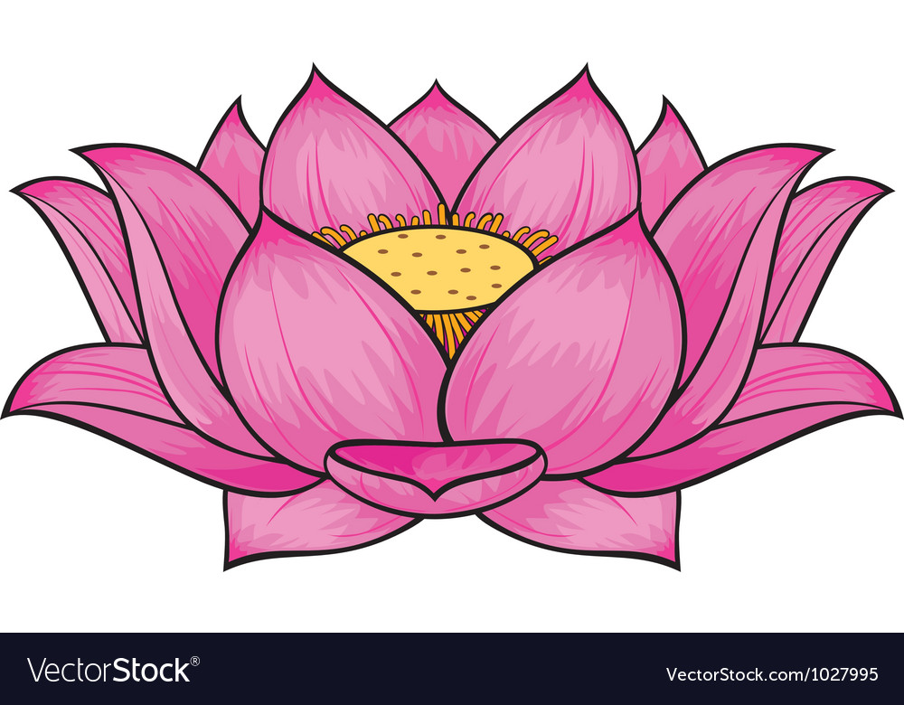lotus flower graphic art lotus Lotus Flower Graphic Design