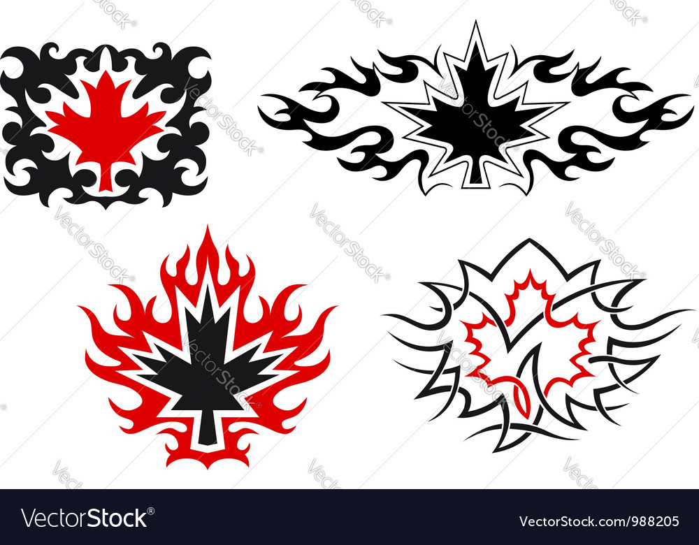 Maple leaves emblems and symbols vector