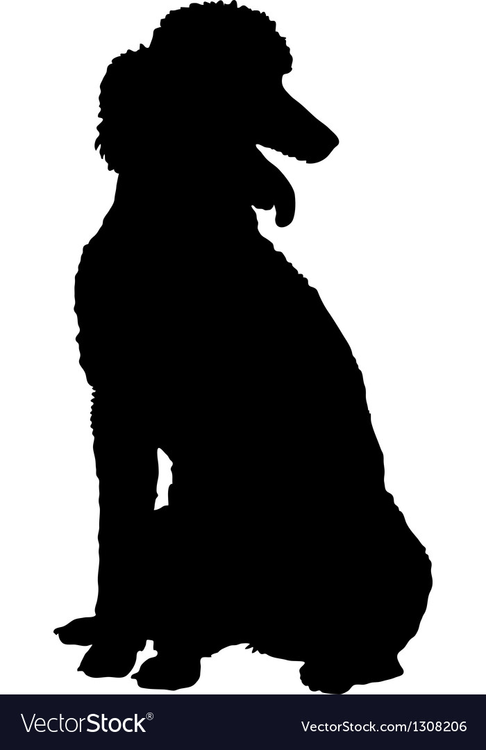 Poodle silhouette vector